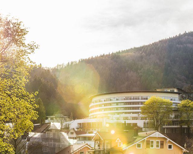 Abb. Klimaneutrale Weihnachtsfeiern im Schwarzwald