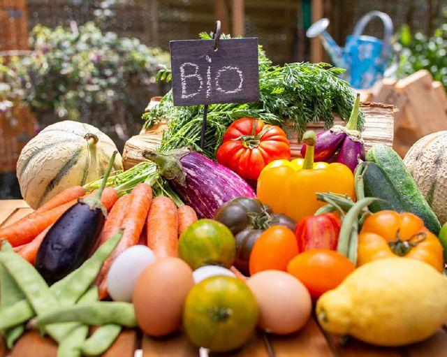 Abb. Biologisch genießen und nachhaltig auftanken