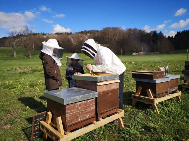 Abb. Huhn küsst Biene