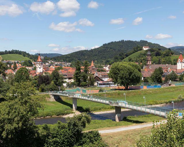 Abb. Der Schwarzwald ruft - Kuckuck